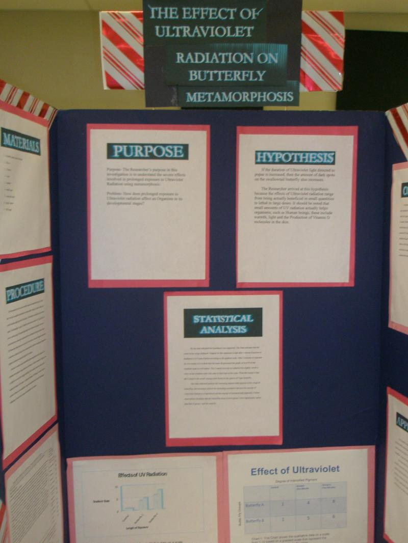 5th grade science fair research papers